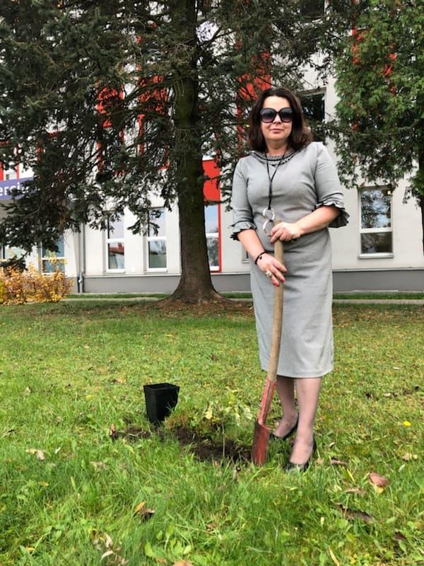 """Realizacja projektu """"Sto drzew na 100-lecie odzyskania przez Polskę niepodległości"""""""